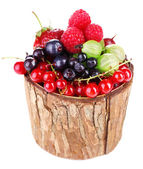 Forest berries in wooden box, isolated on white — Stock Photo