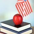 Composition of American flag, books and apple — Stock Photo #49096197