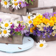 Beautiful flowers in crates with kerosene lamp — Stock Photo #49098023