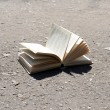 Open book on road — Stock Photo #49099189