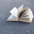 Open book on road — Stock Photo #49099193