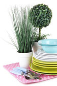 Clean dishes with flowers — Stock Photo
