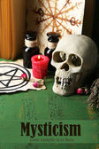 Composition with skull,old book, magic potions, candle and dry herbs — Foto Stock