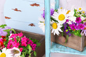 Beautiful flowers in crates on wooden stand — Stock Photo
