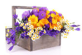 Beautiful flowers in crate — Stockfoto