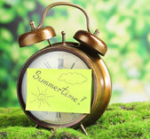 Old clock on grass — Stock Photo