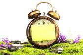 Old clock on moss — Stock Photo