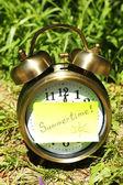 Clock on grass — Stock Photo