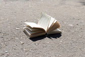 Open book on road — Stock Photo