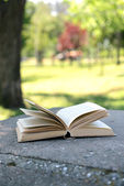 Open book in park — Stock Photo