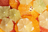 Sliced citrus fruits — Stock Photo