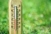 Termometro su fondo naturale — Foto Stock