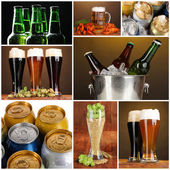 Beer collage — Stock Photo