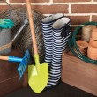 Tools of gardener — Stock Photo #49137833