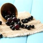 Blackcurrants in bowl — Stock Photo #49147865