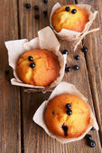 Cupcakes with blueberries — Stock Photo
