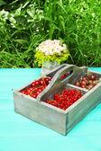 Berries in wooden box — Stock Photo