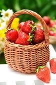 Strawberries in wicker basket — Stock Photo