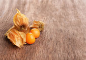 Physalis fruits — Stock Photo