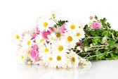 Bouquet of daisies isolated on white — Stock Photo