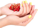 Female hands with stylish colorful nails holding ripe berries, isolated on white — Stock Photo