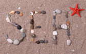 Wort meer aus muscheln und steine auf sand — Stockfoto