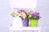Bouquet of colorful flowers in decorative buckets, on chair, on light wall background — Stock Photo
