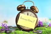 Summertime. Old clock on moss — Foto de Stock