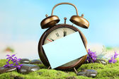 Summertime. Old clock on moss — Foto Stock