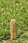Thermometer on grass close-up — Stock Photo