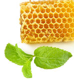 Sweet honeycomb with mint isolated on white — Stockfoto