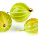 Fresh gooseberries isolated on white — Stock Photo #49453751