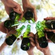 Hands holding beer bottles, close up — Stock Photo #49456291