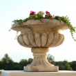 Stone planter with flowers in garden — Stock Photo #49456871