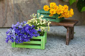 Garden decoration with wildflowers, outdoors — Stock Photo