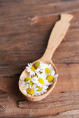 Camomile in wooden spoon on table close-up — Stock Photo