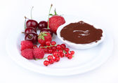 Ripe sweet berries and liquid chocolate, isolated on white — Stock Photo