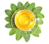 Composition of fresh mint leaves, mint tea in glass cup and brown sugar isolated on white — Stock Photo