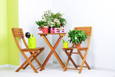 Many beautiful flowers on table and chairs in room — Stockfoto