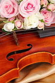Classical violin on fabric background — Stockfoto