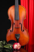 Classical violin on curtain background — Stock Photo