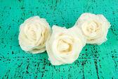 Sugar white roses — Stock Photo