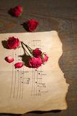 красивые розовые сушеные розы на старой бумаге с примечаниями, на фоне деревянных — Стоковое фото