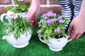 Gardener holding flowers in decorative pots, close-up — Stock Photo