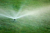 Automatic sprinklers watering grass — Stock Photo