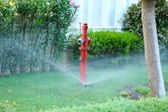 Irrigation system in garden — Stock Photo