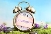 Summertime. Old clock on moss — Stock Photo