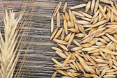 Rye grains and ears on table, close-up — Stock Photo