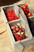 Fresh berries in wooden box, close up — Stock Photo