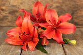Beautiful lily on wooden background — Stockfoto